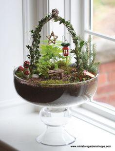 ejemplo jardín en miniatura