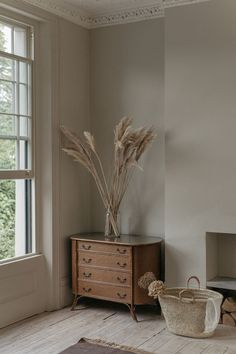 dried pampas grass arrangement in tall glass vase. Home Interior, Interior And Exterior, Interior Decorating, Interior Livingroom, Natural Interior, Interior Colors, Interior Plants, Natural Home Decor, Interior Modern