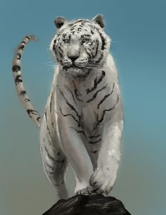 white Tiger - combined Study of 2 pictures Panther, Study, Draw, Pictures, Painting, Animals, To Draw, Animais, Studio