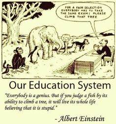 Funny but true. A little humor around standardized testing in education :) Education System, Teacher Humor, Teacher Quotes, Teacher Comics, Teacher Resources, Education Quotes, Albert Einstein Quotes Education, Learning Quotes, The Selection