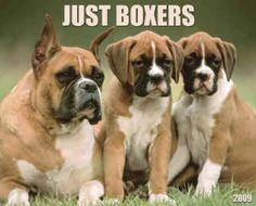 Just Boxers....says it all