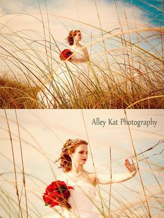 Alley Kat Photography