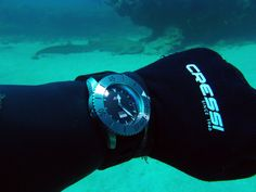 North West Australia CD-2 diving with a forum member