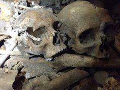 http://thedayafter2012.blogspot.it/2015/12/in-sardegna-spunta-uno-scheletro.html