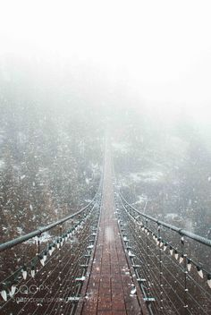 """Fresh snowfall - Pinned by Mak Khalaf """"Into the storm"""" Memories from when we spent the day high up in the mountains of the Squamish area exploring with @bruinalexander. We initially had a mission to get some good fog but to our surprise we ended up encountering some fresh snowfall. Landscapes adventurebcbridgecanadacanoncloudsexplorefjordforestlandscapesmountainmountainsnaturenorthseatoskyskysnowsnowfallsquamishtraveltreetreesvancouverwinter by salvadorboissett"""