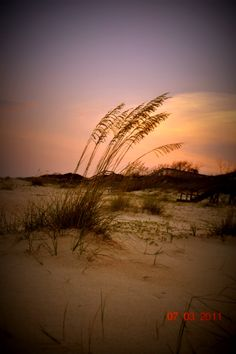 St George Island, Florida.    Interested in vacationing in the area?  Click here for accommodations: http://collinsvacationrentals.com/