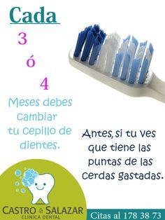 #cepillodental #dentista #dentistry #salud #diente #odontologo