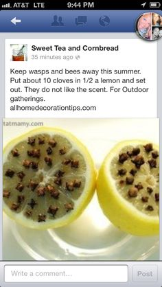 Keep  bees away from your next picnic