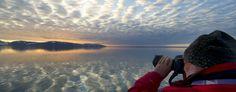 Viaggio Artico e Antartico - Tour Operator Il Viaggio - Journeys & Voyages