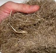 The primary hemp fiber, which is the long fibers on the outside of the stalk, make an excellent high strength natural reinforcing fiber for composites.