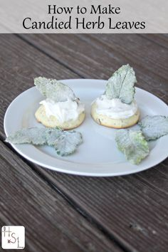 Make candied herb leaves as a fun way to preserve homegrown herbs and make a beautiful presentation on homemade baked goods.