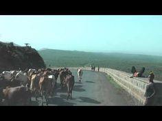 Ethiopia 112: Road after Arba Minch