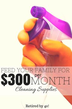 For $300 a month I buy groceries, cleaning supplies, toiletries, and even diapers & formula for my family! Learn how to do this for your family in this 3-part series! http://www.retiredby40blog.com/2014/06/23/feed-your-family-on-300/