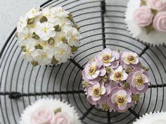 Cupcakes - Home baking - buttercream Apple blossom, weaving an anemone  - 홈베이킹 - 버터크림 애플블라썸, 아네모네 짜기 - YouTube