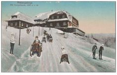 You are looking for a rare collectable item? Stamps, coins and banknotes, postcards or any other collectable items are on Delcampe! Berg, The Collector, Auction, Painting, Outdoor, Winter, Ski, Roots, Outdoors