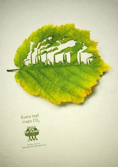 Beatutiful and clever ad by Legas Delaney. Love the cut leaf!