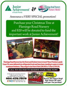 Tick! Tock! Time Flies... Another Expiring Experience from LastMinute Lauderdale: Flamingo Road Nursery Christmas Tree Deal Benefits Junior Achievement