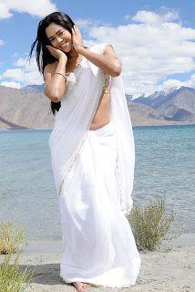South Indian , Bollywood Actress and Models: Sameera Reddy Saree Photoshoot