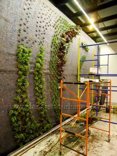 Muros verdes plantas Ignacio Solano Hotel Cosmos 100
