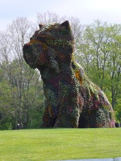 """Jeff Koons """"Puppy"""" seen at the Brandt Foundation, Greenwich, CT"""