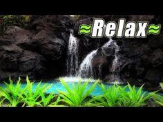 RAIN of Relaxing Water Sounds 4 SLEEP Relax Hawaii Tropical Waterfall Fountain Nature Sound sleeping