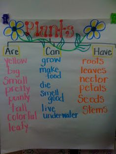 Spring Kindergarten Literacy Worksheets Core