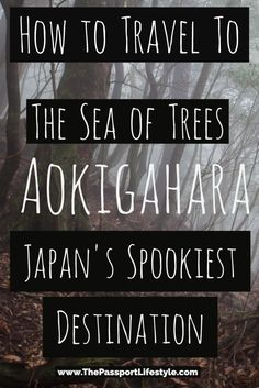 The ultimate guide to visiting Japan's most popular haunted travel destination, the suicide forest, Aokigahara. Learn everything at www.thepassportlifestyle.com/aokigahara-suicide-forest-japan