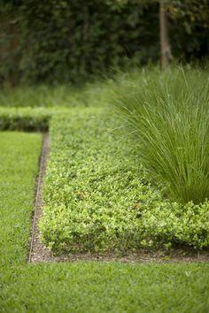 Garden edge: steel edge strip