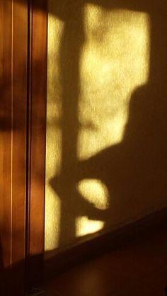 Shadow day 15 . Silvia Daniela Godinez Diaz