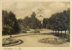 Königsberg (Pr.), Tiergarten mit Aussichtsturm