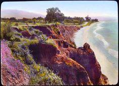 Landscape - Photo - California, Santa Barbara, Channel drive