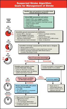 American Heart Association BLS Poster | Suspected Stroke Algorithm Card - 25 pk 90-1024