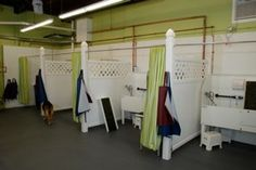 19 best dog grooming stationsspace images on pinterest bathing bays solutioingenieria Image collections