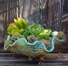 Turquoise scallop pot