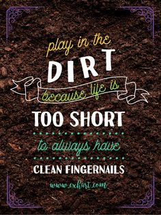 Play in the dirt. Because life is too short to always have clean fingernails.