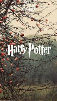 Harry Potter Autumn Wallpaper