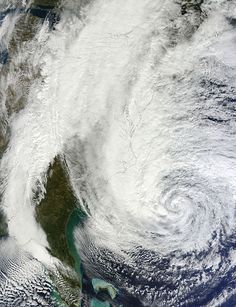 Hurricane Sandy is not the one that NYC wants but it's creating family time http://exm.nr/Rs523l