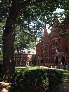 Drive through or stroll around Harvard campus briefly