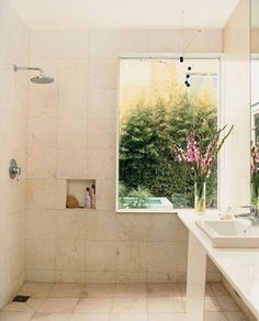 wow- love the window- might be hard to keep water free at that distance... like the overall wet room though