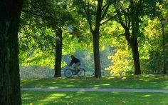 Oslo prohibirá los coches en el centro de la ciudad en 2019