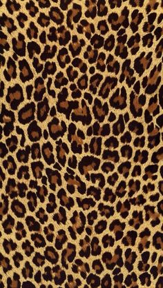 perfect leopard print background for iphone Hd Iphone 5 Wallpapers, Iphone Wallpaper 4k, Sf Wallpaper, Cellphone Wallpaper, Pattern Wallpaper, Walpaper Iphone, Pretty Wallpapers, Hd Desktop, Black Wallpaper