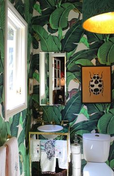 martinique wallpaper... i love a bold, crazy wallpaper in a tiny space