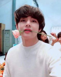 This is a Community where everyone can express their love for the Kpop group BTS Bts Taehyung, Namjoon, Bts Selca, Bts Bangtan Boy, Bts Jungkook And V, Daegu, Foto Bts, Admirateur Secret, V Bts Cute