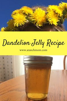 Dandelion jelly is such a pioneer-ish thing to make, isn't it? We discovered that we really enjoy this golden jelly. Jelly Recipes, Jam Recipes, Canning Recipes, Lemon Jam, Fresh Lemon Juice, Dandelion Jelly, Dandelion Flower, Chokecherry Jelly, How To Make Jelly