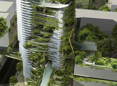 Singapore- an urban jungle