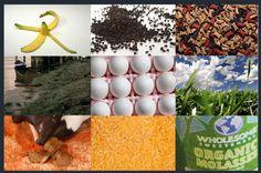 10 Natural Fertilizer Recipes how-does-your-garden-grow