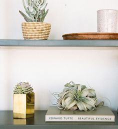 Rose & Fitzgerald Solid Brass Planter