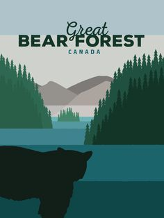 Discover Great Bear Forest in British Columbia, Canada! Discover Canada, Canadian Wildlife, Central America, British Columbia, Continents, Caribbean, Road Trip, Mexico, Bear