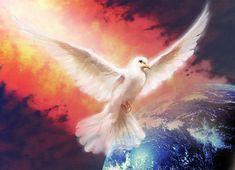 use your illusion. Jerusalem Bible, Tarot, English To Hebrew, Understanding The Bible, Saint Esprit, Peace Dove, Prophetic Art, Flower Images, Holi