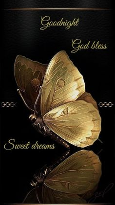 Wall Art HD Print Black and Gold Butterfly Poster Beautiful Good Night Images, Cute Good Night, Good Night Gif, Good Night Sweet Dreams, Good Night Quotes, Night Qoutes, Evening Quotes, Good Morning Picture, Good Night Prayer